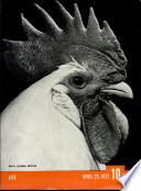 26 Apr 1937